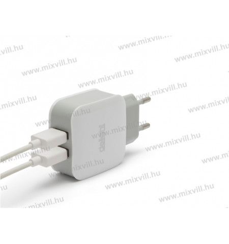 55045-2wh-usb-halozati-adapter-telefon-tolto